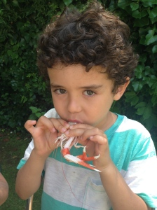 Child eating a crustacean